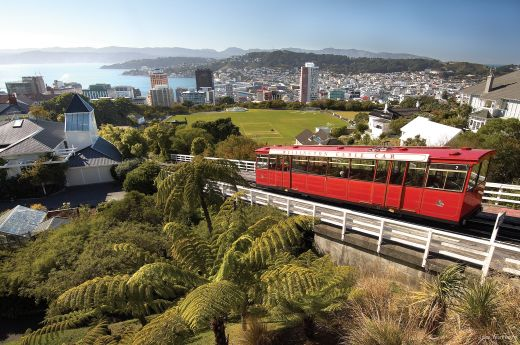 Things to do in Wellington New Zealand | CityLife Wellington
